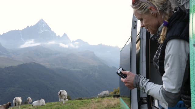 woman takes picture of cows grazing in alpine meadow - medium group of animals stock videos & royalty-free footage