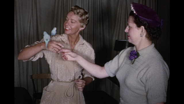 1954 montage woman taking birds out of cage, putting them on shoulder / new york city, usa - 1954 stock videos and b-roll footage