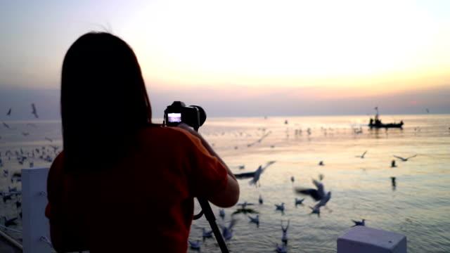 vidéos et rushes de femme prenant la mouette photo sur le pont de la mer. - photographe