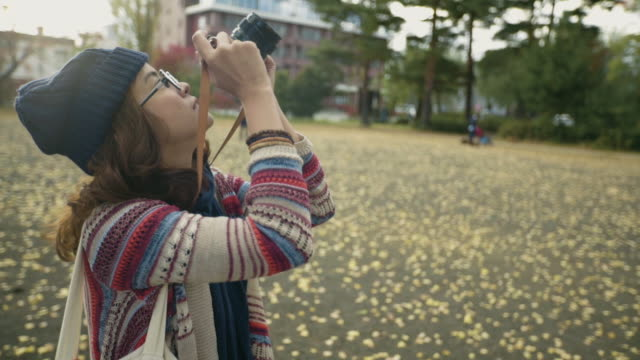 woman taking pictures of ginkgo tree with camera - satoyama scenery stock videos & royalty-free footage