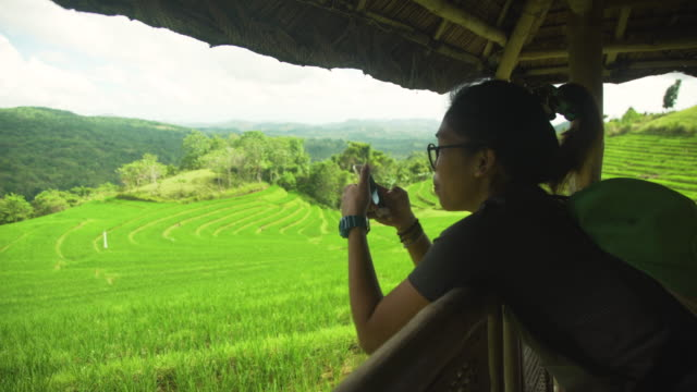 woman taking pictures of rice terraces field at bohol, candijay, philippines - 農林水産関係の職業点の映像素材/bロール