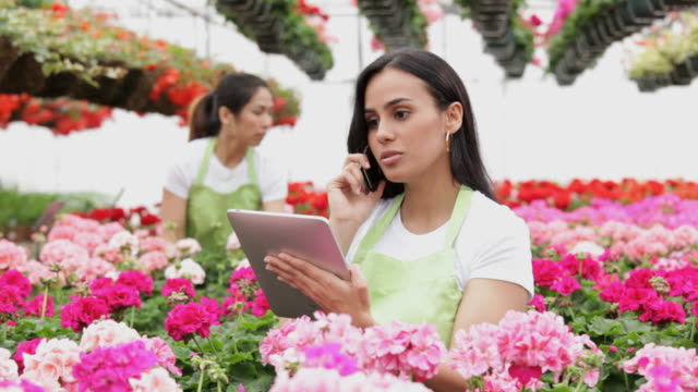 ms pan woman talking on cell phone in floral business / richmond, virginia,united states - gewächshäuser stock-videos und b-roll-filmmaterial