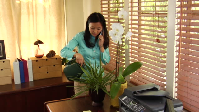 ms woman talking on cordless phone while watering plants in home office / los angeles, california, usa - cordless phone stock videos & royalty-free footage