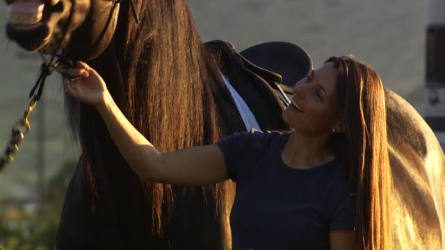 woman talking to a horse - see other clips from this shoot 1139 stock videos & royalty-free footage