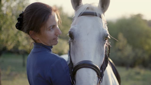 woman talking to white horse with affection - bridle stock videos & royalty-free footage