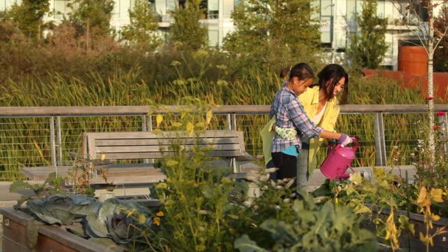 vídeos de stock, filmes e b-roll de woman teaching daughter how to water plants in an urban garden - vegetable garden