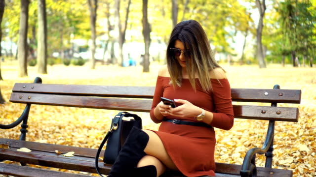 woman texting message on the bench in autumn park - red dress stock videos & royalty-free footage