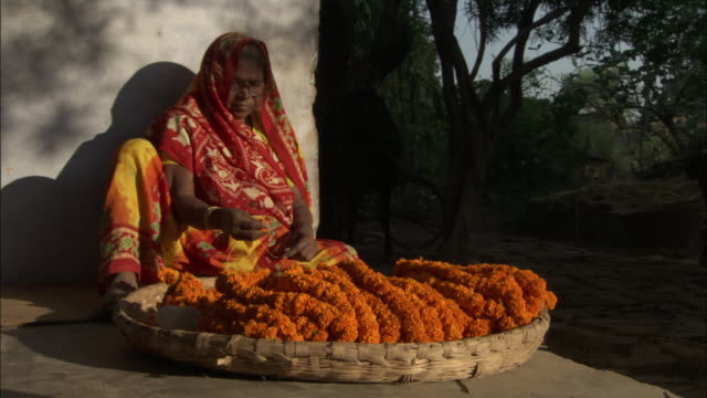 Woman threads marigolds onto garland, Varanasi Available in HD.