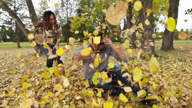woman throws leaves on man - mischief stock videos & royalty-free footage