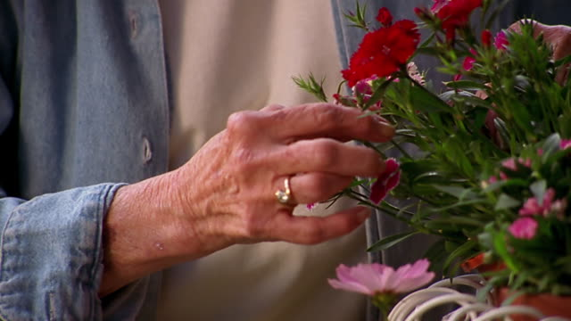 A  woman touches flowers on a potted plant.
