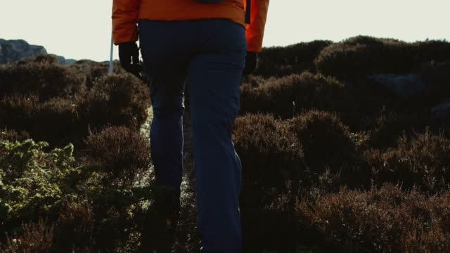 Woman travel adventures: mountain hiking in Norway