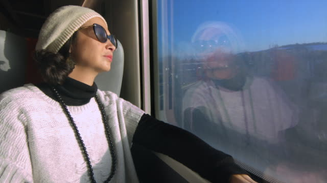 Woman traveling by train enjoying the view through the window