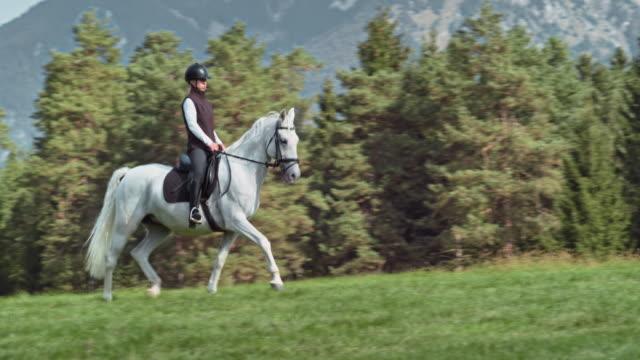 vídeos de stock e filmes b-roll de woman trotting on her white horse across a mountain meadow - cavalgar