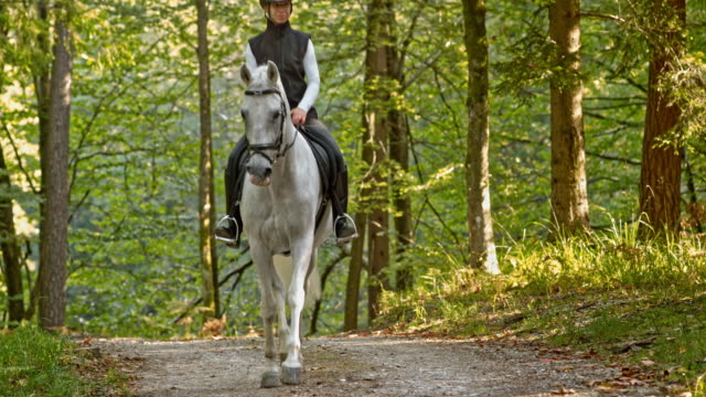 SLO MO TD Woman trotting on white horse through forest