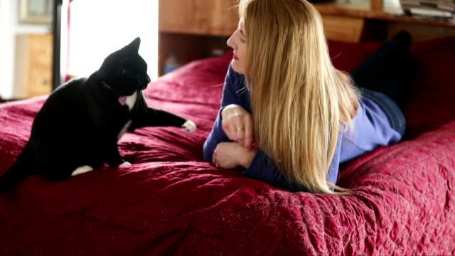 Frau, die versucht, ihre Katze streicheln