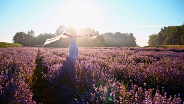 SLO-MO-Frau drehte auf dem Gebiet der Lavendel