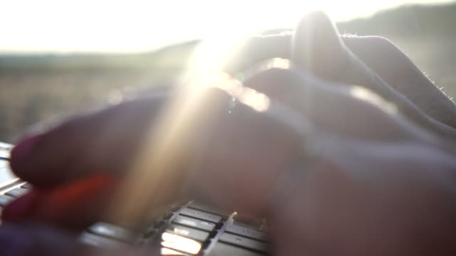 woman typing on laptop keyboard. - sunbeam stock videos & royalty-free footage