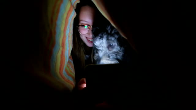 woman under duvet use mobile phone - duvet stock videos & royalty-free footage