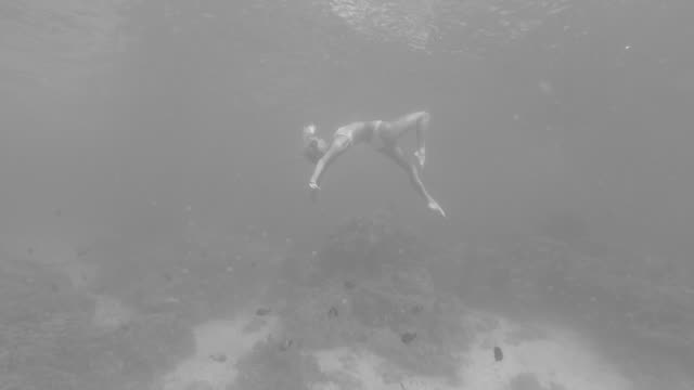 a woman underwater snorkeling swimming dancing in a bikini over a coral reef. - slow motion - snorkelling stock videos & royalty-free footage