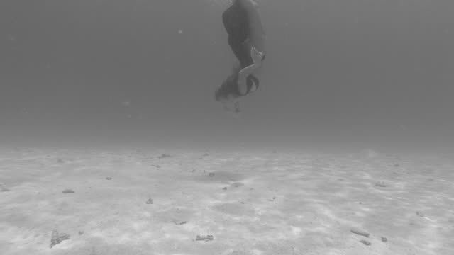 a woman underwater swimming dancing in a bikini over a coral reef. - slow motion - anmut stock-videos und b-roll-filmmaterial