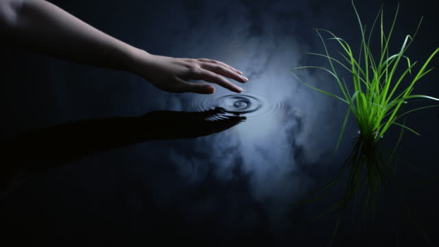 a woman uses her finger to create ripples next to a plant in water reflected in a moonlit sky. - england stock videos & royalty-free footage