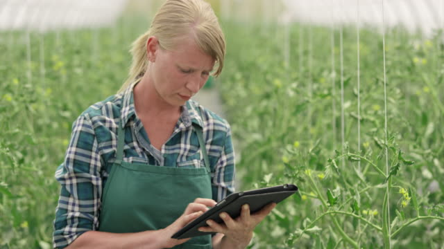 Woman using a digital tablet in the greenhouse