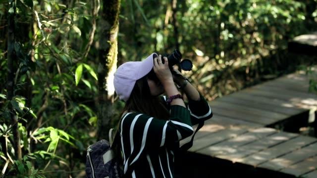 stockvideo's en b-roll-footage met vrouw met verrekijkers in het bos, slow-motion - vogelen