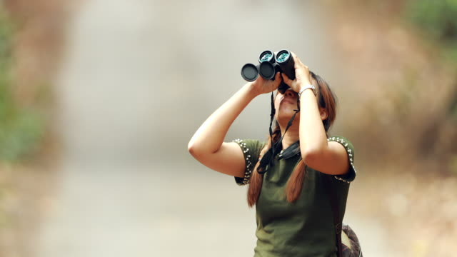 woman using binoculars in the forest - osservare gli uccelli video stock e b–roll