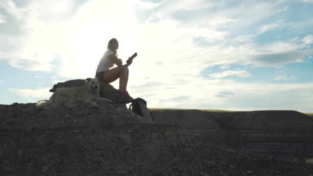 woman using tablet on mountain top next to dog - rucksack stock videos & royalty-free footage