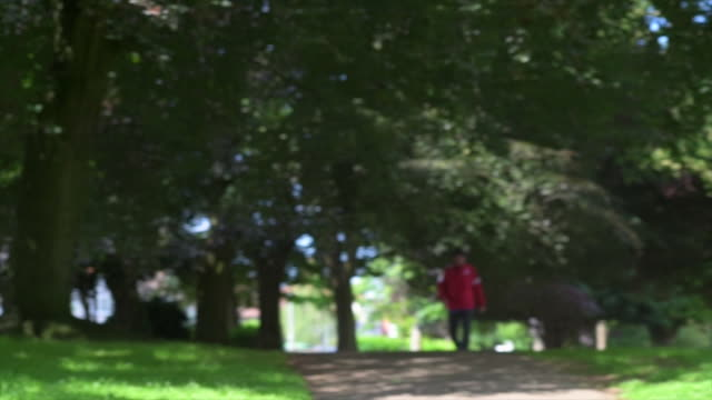 woman using technology in park - northampton stock-videos und b-roll-filmmaterial