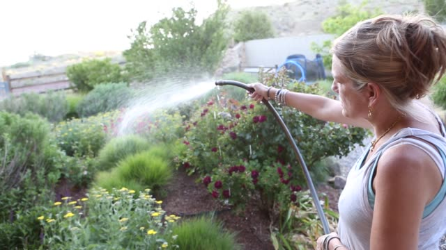 woman using water hose in garden - earring stock videos and b-roll footage