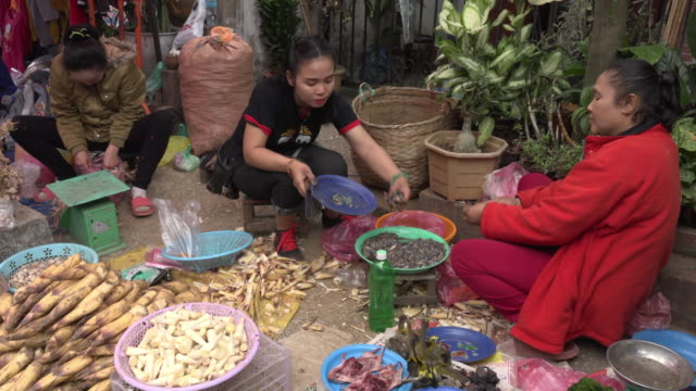 woman vendor preparing food on farmer market - bamboo shoot stock videos & royalty-free footage