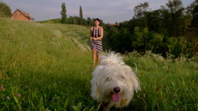 SLO MO Woman Walking A Dog