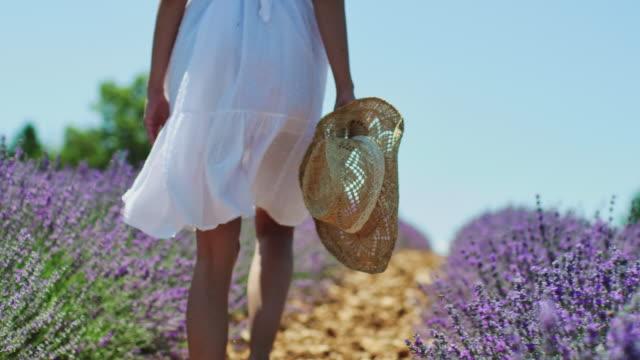 frau läuft entlang lavendelpflanzen auf demfeld - frische stock-videos und b-roll-filmmaterial