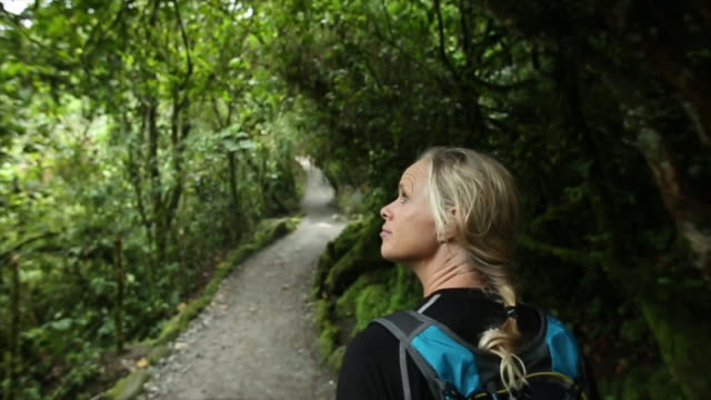pov of woman walking along rainforest path - blonde hair stock videos & royalty-free footage