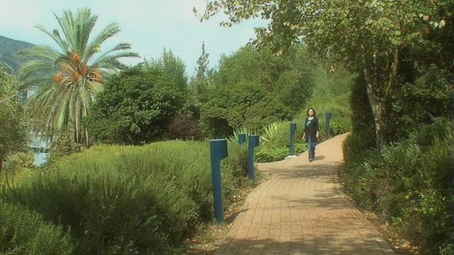 女性の通り沿いに徒歩で、舗道公園 - ヤシ点の映像素材/bロール