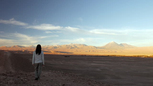 woman walking and looking at the desert landscape - fast kamera bildbanksvideor och videomaterial från bakom kulisserna