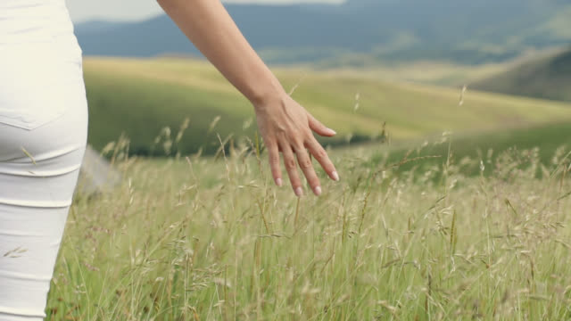 woman walking and touching long grass in field - long stock videos & royalty-free footage