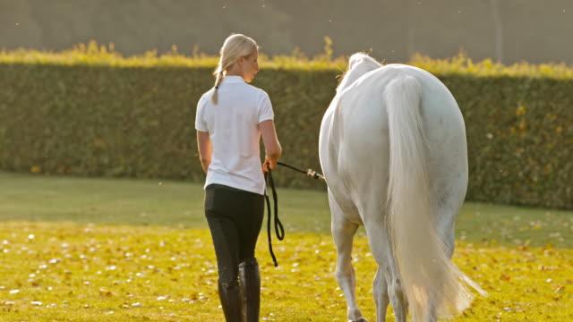 SLO MO Frau zu Fuß mit weißen Pferd bei Sonnenaufgang