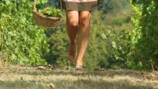 HD DOLLY: Woman Walking Barefoot In A Vineyard