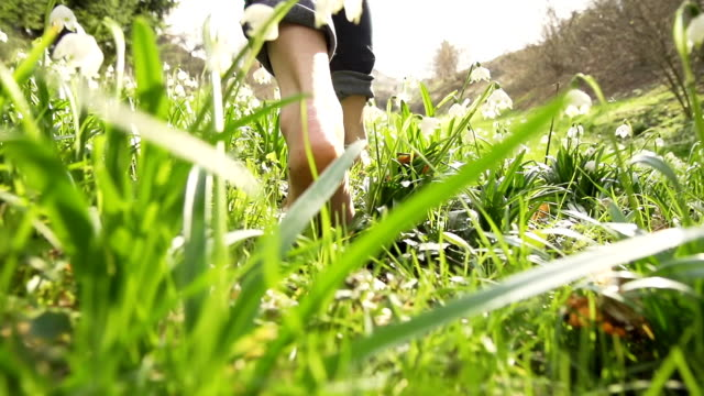 hd time-warp: woman walking barefoot over spring snowflakes - grass family stock videos & royalty-free footage
