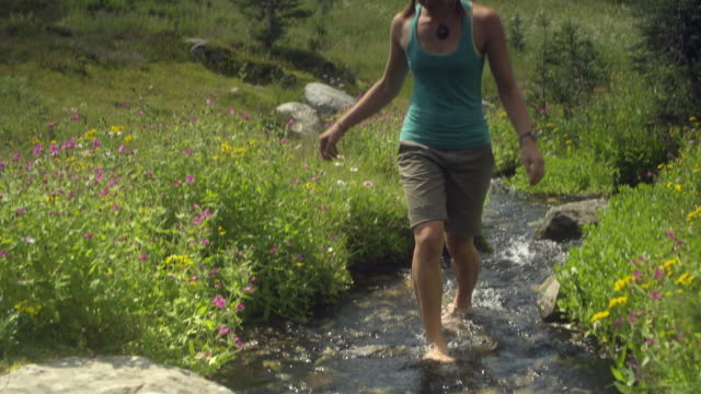 ms td woman walking barefoot through stream, garibaldi provincial park, squamish, british columbia, canada - garibaldi park stock videos & royalty-free footage