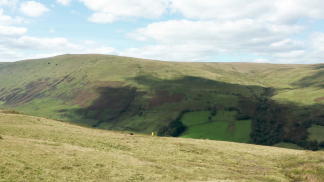 woman walking her dog in the brecon beacons - brecon beacons video stock e b–roll
