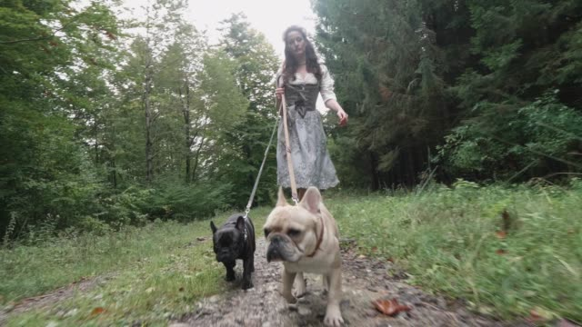 vídeos de stock, filmes e b-roll de a woman walking her dogs in nature wearing traditional german clothing - pet clothing