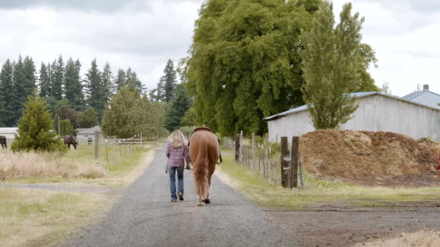 woman walking her horse down a gravel road - ranch home stock videos & royalty-free footage