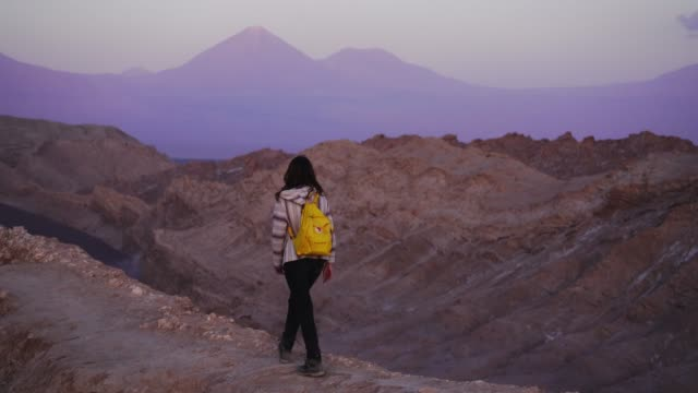 woman walking in atacama desert in chile - standing stock videos & royalty-free footage