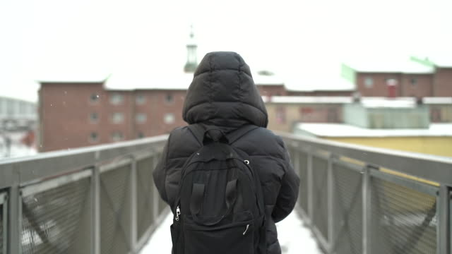 woman walking in snowy weather - winter coat stock videos & royalty-free footage
