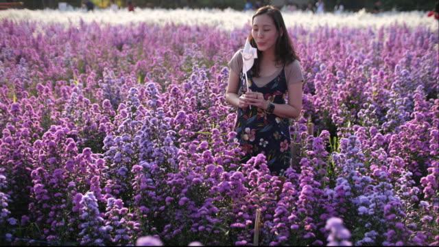 woman walking in the field of purple flower, 4k - shawl stock videos & royalty-free footage