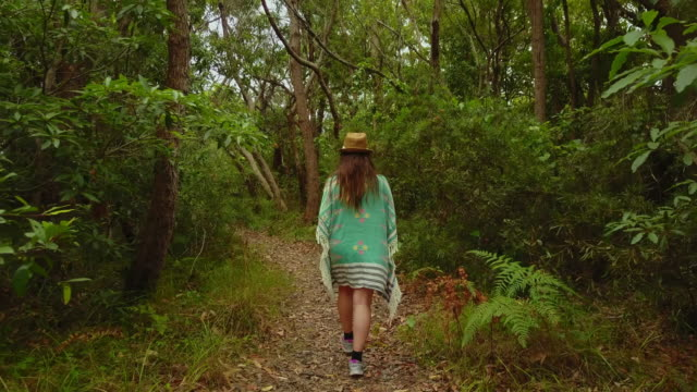 woman walking in the forest, at huskisson, jervis bay, australia. - ニューサウスウェールズ州点の映像素材/bロール
