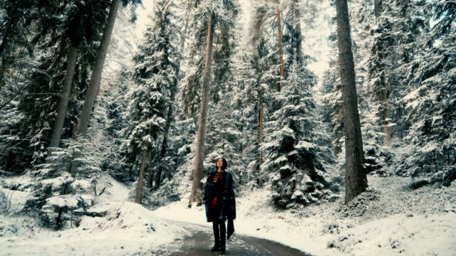 woman walking   in the  forest  in switzerland - cosy stock videos & royalty-free footage